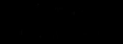 SISUSTUS VILLA VILHELMIINA Logo